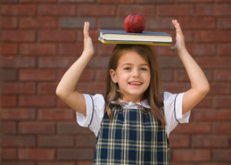 What are the main similarities and differences between private schools and public schools?