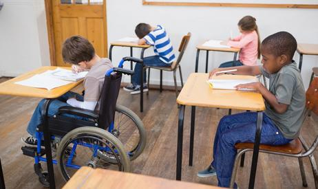 Students with disabilities sample essay