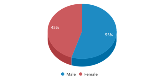 This chart display gender of Washington Township Middle/High School