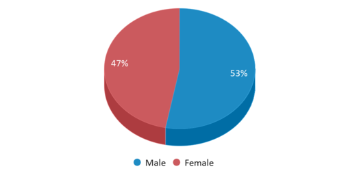 This chart display gender of Meredith Nicholson School 96