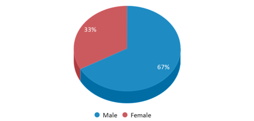 This chart display gender of Mclean Education Center (alternative School)