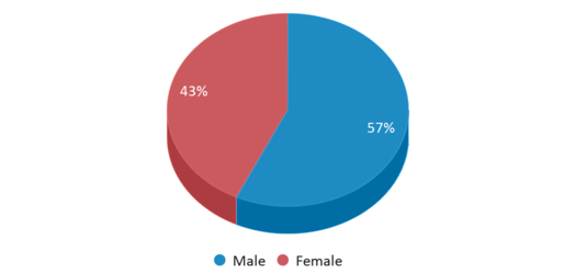 This chart display gender of Central Springs Elementary Manly Campus