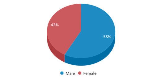 This chart display gender of Onion Creek Elementary School