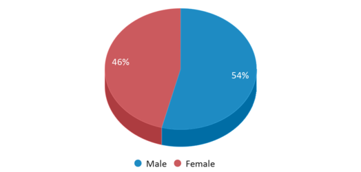 This chart display gender of Waterford Durant High School