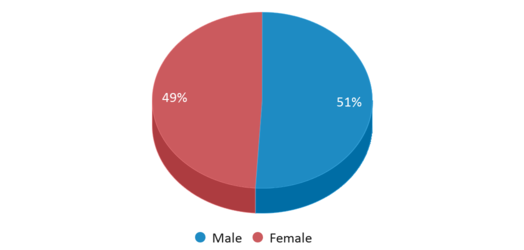This chart display gender of Hunter Lake Elementary School