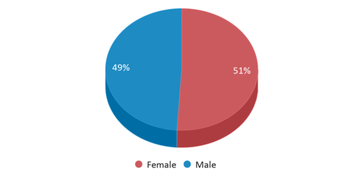 This chart display gender of John C Dempsey Middle School