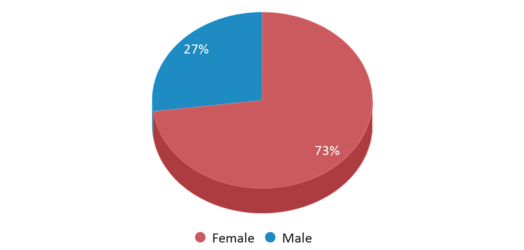 This chart display gender of Shoshone Elementary School