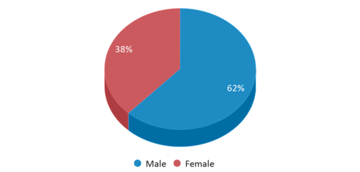 This chart display gender of Two Rivers Magnet Middle School
