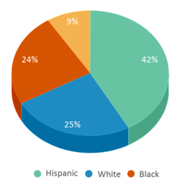 This chart display the percentage breakdown of students of all ethnic groups in Anderson Elementary School.