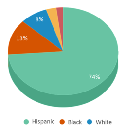 This chart display the percentage breakdown of students of all ethnic groups in Serrano Middle School.