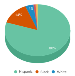 This chart display the percentage breakdown of students of all ethnic groups in Chaparral Elementary School.