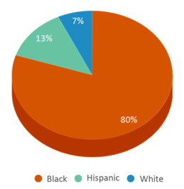 This chart display the percentage breakdown of students of all ethnic groups in New Era Academy.