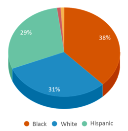 This chart display the percentage breakdown of students of all ethnic groups in Scott Middle School.