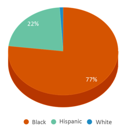 This chart display the percentage breakdown of students of all ethnic groups in Toussaint L'ouverture Elementary School.