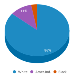 This chart display the percentage breakdown of students of all ethnic groups in Powder River Basin Children's Center.