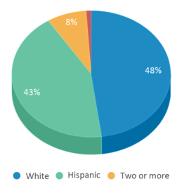 This chart display the percentage breakdown of students of all ethnic groups in Dixon Montessori Charter.