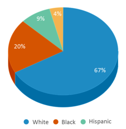 This chart display the percentage breakdown of students of all ethnic groups in New Horizons For Learning.