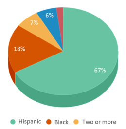 This chart display the percentage breakdown of students of all ethnic groups in Ingenuity Charter.