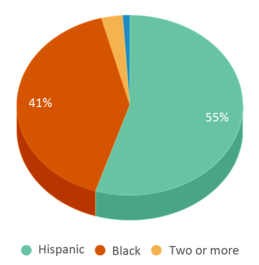 This chart display the percentage breakdown of students of all ethnic groups in Oaklawn Language Academy.