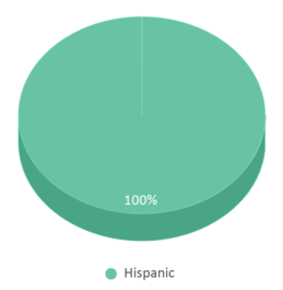 This chart display the percentage breakdown of students of all ethnic groups in Juan De Dios Salinas Middle School.