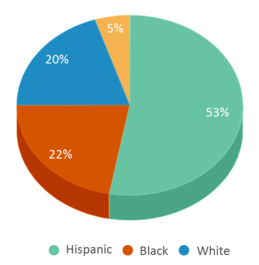 This chart display the percentage breakdown of students of all ethnic groups in Psa Civic Leadership High School.