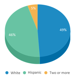 This chart display the percentage breakdown of students of all ethnic groups in Comal Discipline Center.