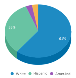 This chart display the percentage breakdown of students of all ethnic groups in Red Rock Academy.