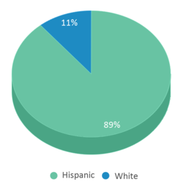 This chart display the percentage breakdown of students of all ethnic groups in Wahitis Elementary School.