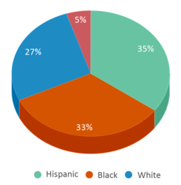 This chart display the percentage breakdown of students of all ethnic groups in Aerospace/hydrospace Engineering And Physical Sciences High School.
