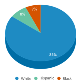 This chart display the percentage breakdown of students of all ethnic groups in Ib School Of Quabbin.