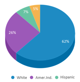 This chart display the percentage breakdown of students of all ethnic groups in Willow Creek Elementary School.