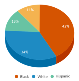 This chart display the percentage breakdown of students of all ethnic groups in Compass Alternative School.
