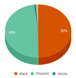 This chart display the percentage breakdown of students of all ethnic groups in Joseph Block Middle School.