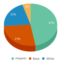 This chart display the percentage breakdown of students of all ethnic groups in Warren G Harding Elementary School.