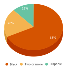 This chart display the percentage breakdown of students of all ethnic groups in Lafayette Early Childhood Center.