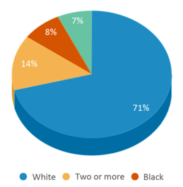This chart display the percentage breakdown of students of all ethnic groups in Carl G Fisher Elementary School 1.