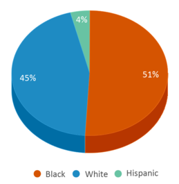 This chart display the percentage breakdown of students of all ethnic groups in Lincoln Village Treatment Center Alternative School.