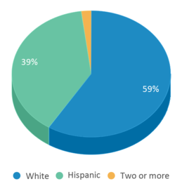 This chart display the percentage breakdown of students of all ethnic groups in Hawarden Elementary School.