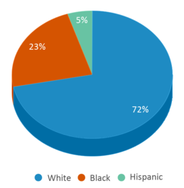 This chart display the percentage breakdown of students of all ethnic groups in Hibbard Alternative.