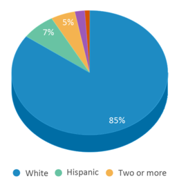 This chart display the percentage breakdown of students of all ethnic groups in Longfellow Elementary School.