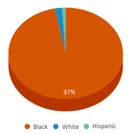 This chart display the percentage breakdown of students of all ethnic groups in J. K. Gourdin Elementary School.