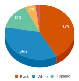 This chart display the percentage breakdown of students of all ethnic groups in Goose Creek High School.