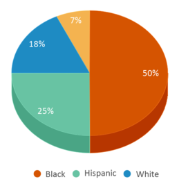 This chart display the percentage breakdown of students of all ethnic groups in Gallman Elementary School.