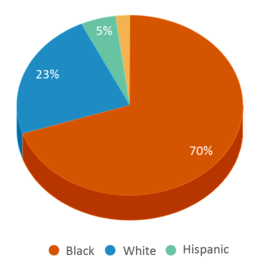 This chart display the percentage breakdown of students of all ethnic groups in Crestwood High School.