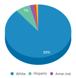 This chart display the percentage breakdown of students of all ethnic groups in Marion High School - 01.