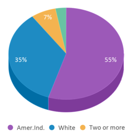 This chart display the percentage breakdown of students of all ethnic groups in Wagner High School - 01.