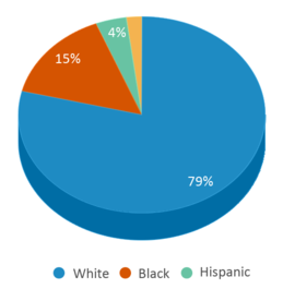 This chart display the percentage breakdown of students of all ethnic groups in Mckenzie High School.