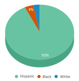 This chart display the percentage breakdown of students of all ethnic groups in Diamond Hill-jarvis High School.
