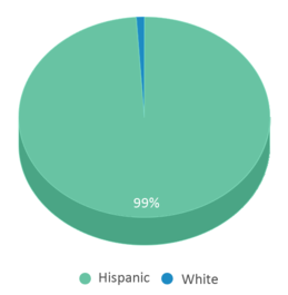 This chart display the percentage breakdown of students of all ethnic groups in H B Zachry Elementary School.