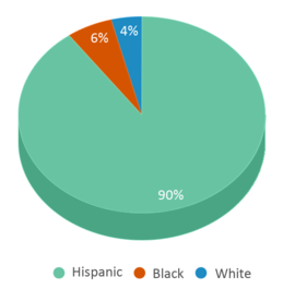This chart display the percentage breakdown of students of all ethnic groups in Gardens Elementary School.